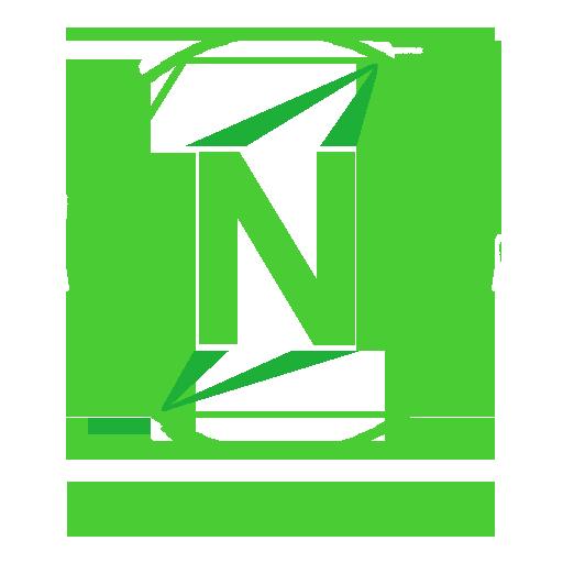 NATIN Logo